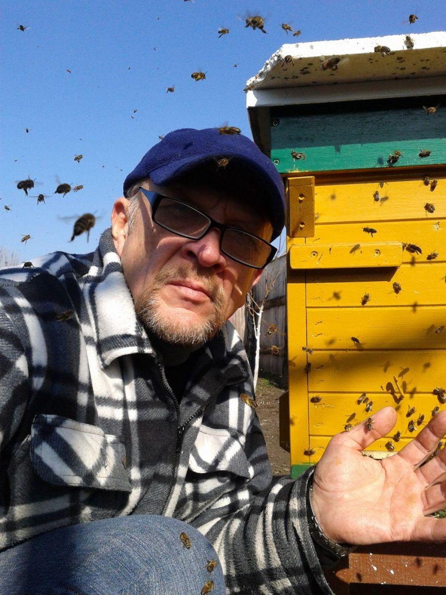 061Lagodne pszczoły